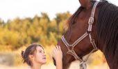 EXPERIMENT INEDIT: caii pot recunoaste emotiile umane