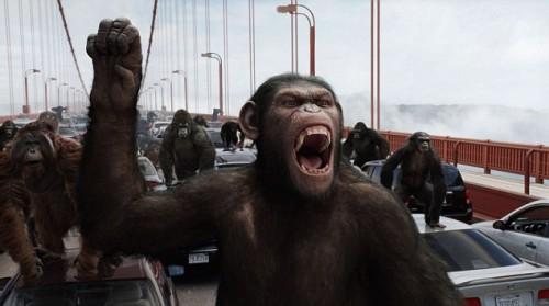 Ce specii ar mosteni pamantul, daca oamenii ar disparea, intr-un viitor apocaliptic?