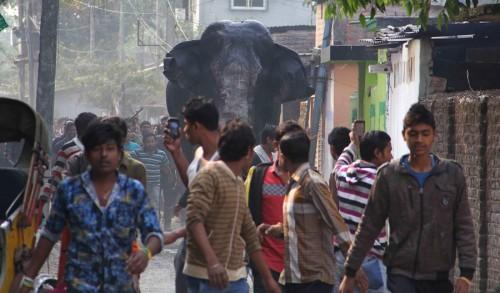 India Rampaging Elephant