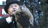 Marmota Phil din Pennsylvania nu si-a vazut umbra si nu s-a refugiat inapoi in vizuina