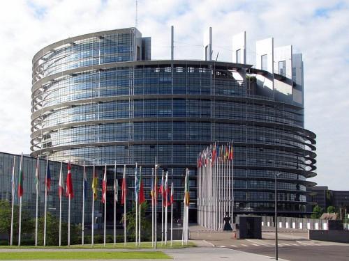 Preocupare europeana: Masuri impotriva traficului cu animale de companie