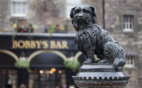 Dovada uimitoare a devotamentului canin: Greyfriars Bobby, cainele care timp de 14 ani a dormit langa mormantul stapanului sau