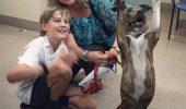 Coso, cea mai fericita catelusa, dupa adoptie