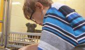 Terapie pentru linistire: cainilor li se citesc povesti…