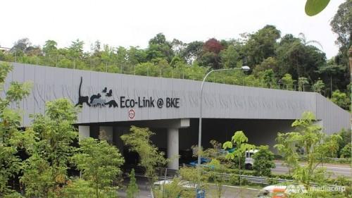 eco-link