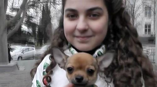O fata i-a cerut lui Vladimir Putin un caine