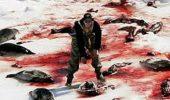 Pamela Anderson, pentru salvarea focilor!