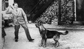 Hitler, alaturi de unul dintre cainii sai!
