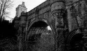 MISTER nedescifrat: Overtoun: podul BLESTEMAT, unde s-au sinucis 600 de caini!
