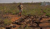 Celebra rezervatie Kruger are, din nou, probleme, cu braconierii