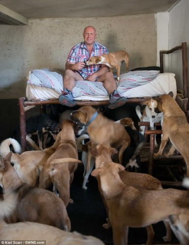 IUBIRE adevarata: un britanic s-a mutat in Maroc si traieste intr-un adapost, alaturi de 150 de caini!