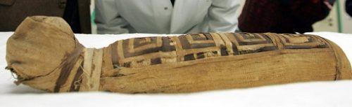 pisica mumie