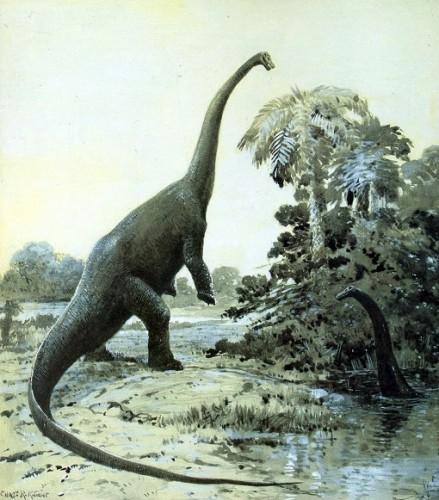 Si daca asterioidul nu lovea Terra, dinozaurii tot ar fi disparut