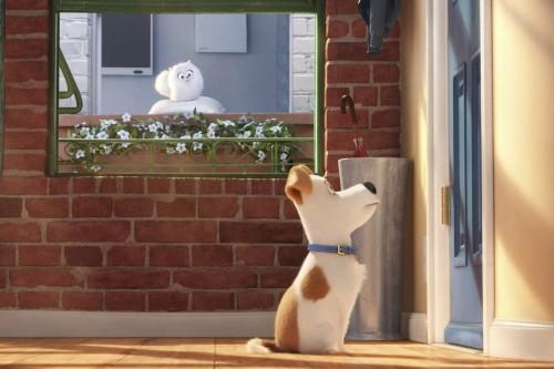 The Secret Life of Pets. Un amuzant film de animatie