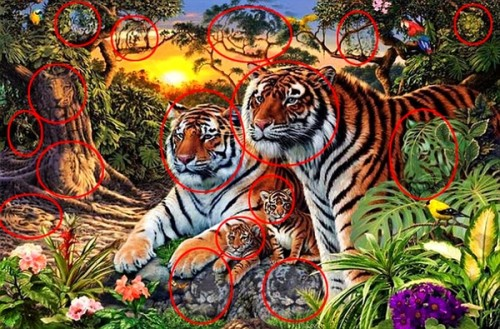 tigrii2