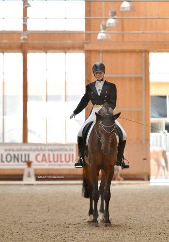 Dresaj ecvestru_Clubul Equestria (2)