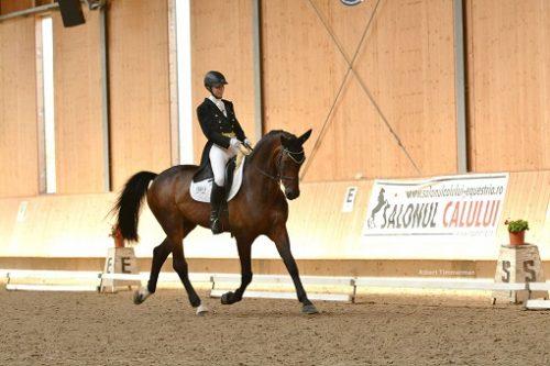 "Dupa 8 ani de pauza, prima ""Clinica de Dresaj"" din Romania, la Clubul Equestria"