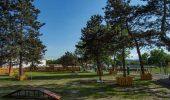 La Deva, se inaugureaza un minunat parc exclusiv pentru caini