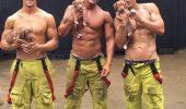Cel mai tare calendar caritabil: pompieri australieni alaturi de catelusi
