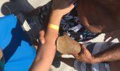 O femeie din Florida a fost dusa la spital cu rechinul care a muscat-o, atarnandu-i de brat…