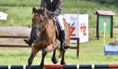 Transylvania Horse Show, cea mai populara competitie ecvestra in randul studentilor din intreaga lume!