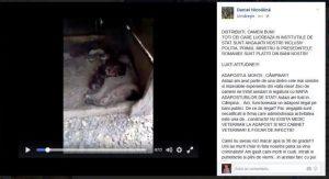 SCADALOS. ADĂPOSTURILE MORȚII. Gradul de civilizație al unei națiuni stă în felul în care sunt tratate animalele
