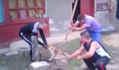 Abuzul asupra animalelor