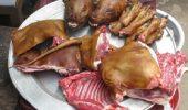 sursa foto - http://news.asiantown.net