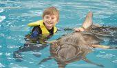 Terapia cu delfini pentru DAVID!!!