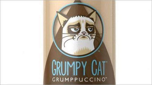 Singurul produs pentru care stapanii si-au dat acordul pentru folosirea imaginii pisicii  morocanoase!