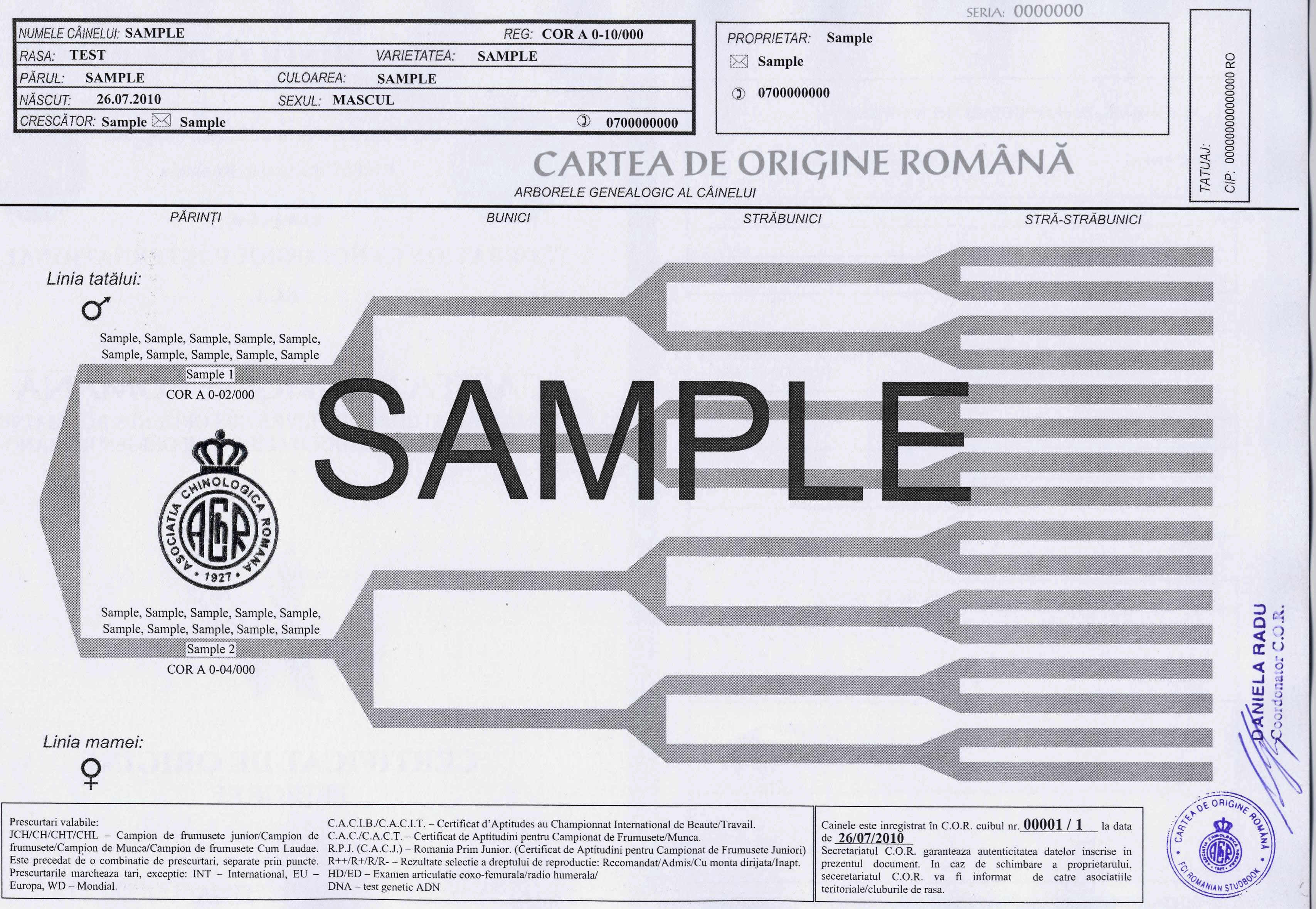 model de certificat din cartea de origine
