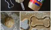 O reteta pe baza de banane, unt de arahide si ovaz...pentru biscuiti deliciosi pentru caine!