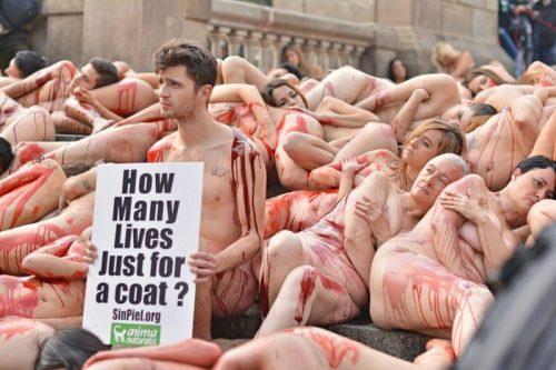 sursa foto - http://spanishnewstoday.com
