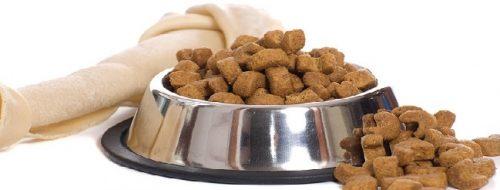 Până la 300 de lei pe lună pentru hrana câinilor de companie?