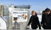 VEȘTI BUNE! Gabriela Firea susține un proiect de hotărâre pentru interzicerea animalelor sălbatice în circurile din București