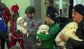 sursa foto - http://globalnews.ca