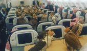80 de locuri speciale….în avion