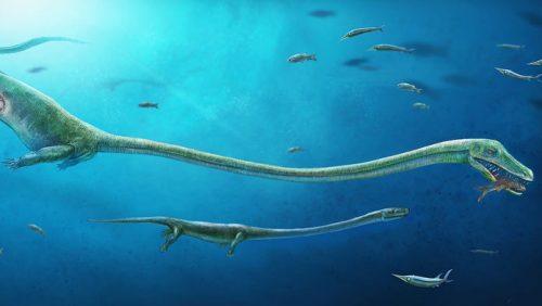 sursa foto - http://www.livescience.com
