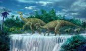sursa foto - http://dinosaurpictures.org