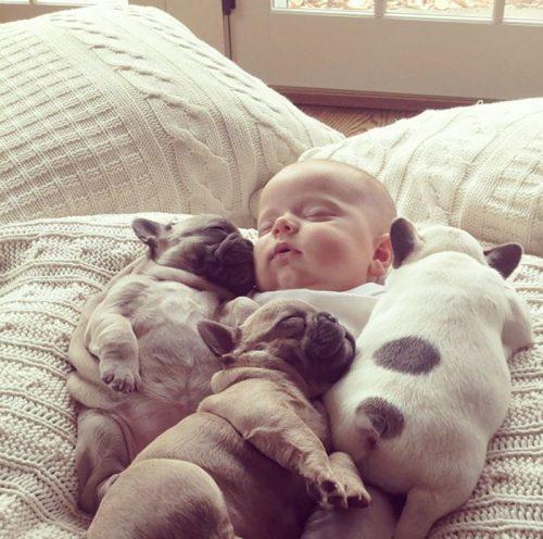 Ce poate fi mai drăguț decât momentul când copiii dorm alături de animalele lor de companie? GALERIE FOTO