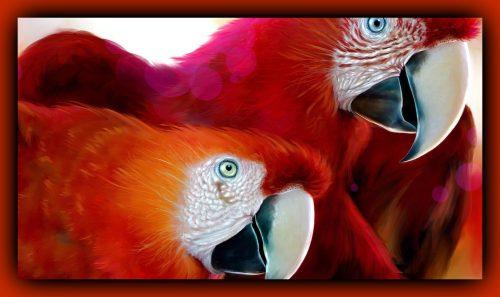 Nu o să crezi până nu vezi cât de bine IMITĂ aceste păsări conversația umană și alte sunete! I VIDEO