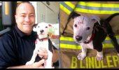 POVESTE EMOȚIONANTĂ! A salvat câinele dintr-un incendiu, iar cățelul a ajuns POMPIER! I VIDEO