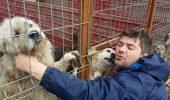 Ce se ascunde în spatele ASOCIAȚIEI PENTRU PROTECTIA ANIMALELOR Kola Kariola? Marius face precizari – VIDEO