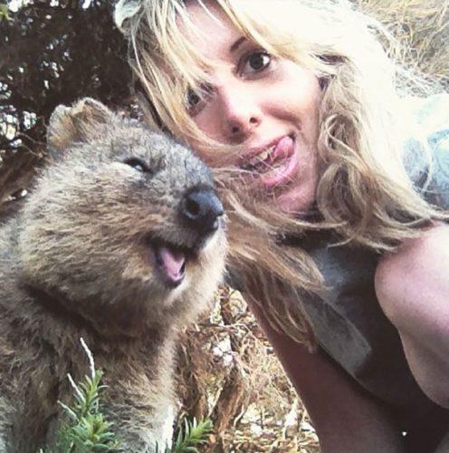 Cel mai fericit animal din lume, în pericol! Uite de ce a creat isterie printre cei dornici de selfie-uri I GALERIE FOTO