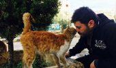 Siria, țara unde ANIMALELE sunt ÎNFOMETATE și SPERIATE DE MOARTE I GALERIE VIDEO-FOTO