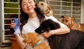 Am aflat în ce țară se interzice consumul de carne de câine și pisică