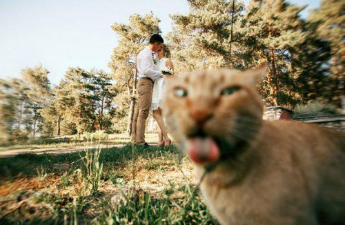 Wow! Imagini-fenomen despre care SE SPUNE CĂ NU LE VEZI ÎN FIECARE ZI I GALERIE FOTO
