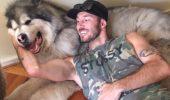 Misiunea bărbatului care salvează animale aflate la limita dintre viață și moarte. Detalii tulburătoare