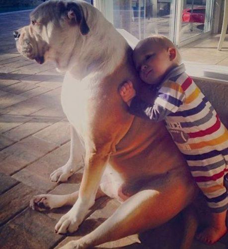 Imagini care te vor convinge încă odată că fiecare copil ar trebui să aibă un animal de companie