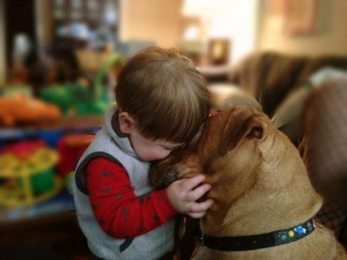 Educația câinelui este ASEMĂNĂTOARE cu cea a copilului? Iată ce spune un specialist